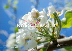 KASSIBER 2|18 - Bericht über Carsten Dethlefs auf Seite 32
