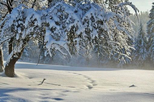 Winterlandschaft, Quelle: cocoparisienne pixabay